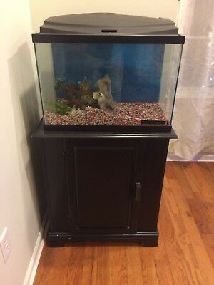20 Gallon Fish Tank With Stand And Startup Package