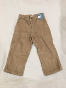 BRAND NEW Gymboree chunky cords. Size 2t