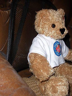 "Vermont FRIENDS FOR LIFE & little Hero 14"" Teddy Bear Plush Stuffed Animal, NEW"