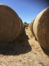 Round bales Clover/rye Greenvale Hume Area Preview