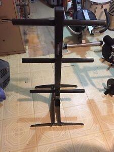 "2"" weight plate rack"