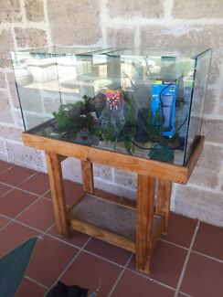 3 Foot Fish Tank + Stand + Plants + Ornaments + Aqua One Filter Dalkeith Nedlands Area Preview