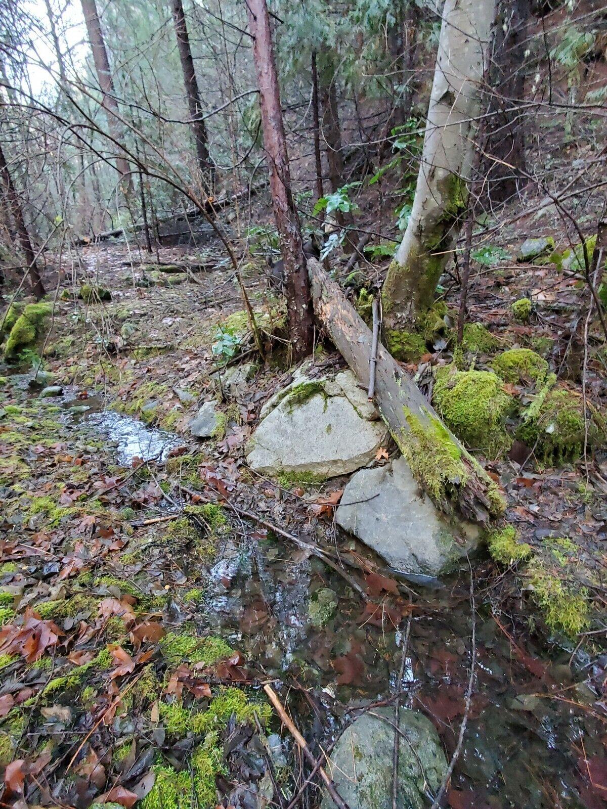20 ACRE GOLD MINING CLAIM - Humbug Creek Siskiyou CALIFORNIA Fun Mine Land - $969.00