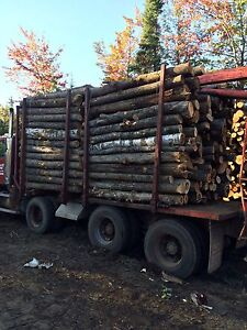 8 foot firewood for sale