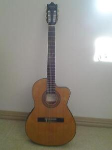 Ibanez acoustic/ electric Spring Hill Brisbane North East Preview
