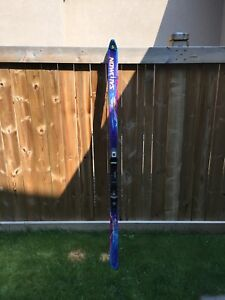 Salomon Evolution 8 ski