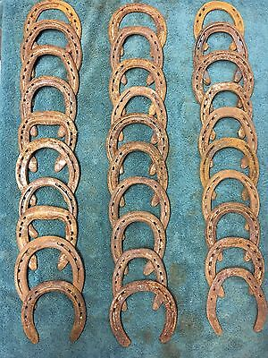 30 USED STEEL HORSESHOES Rusty, No Nails, Straight, No Drill tech, No Clips
