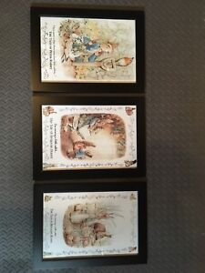 Three Framed Peter Rabbit Pictures
