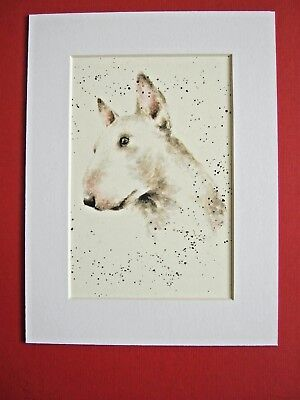 """ENGLISH BULL TERRIER DOG MOUNTED PRINT 6 x 8"""" WATERCOLOR PRINT ART PICTURE"""