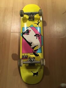 Cruiser skateboard with independent trucks