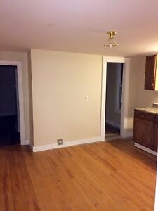 Newly Renovated 3bedroom(Heat and Light included)!!!