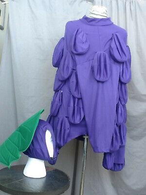 Purple Grapes Suit Bunch of Grapes Costume (Purple Grape Costume)