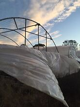 Green house framing x 6 Austral Liverpool Area Preview