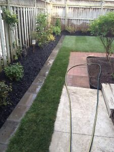 Free landscaping to a landlord willing to rent decent apartment
