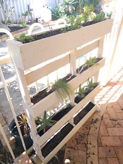 Herb/flower pallet stand