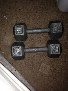 15 lbs weights