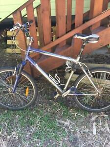 Bike with or without child seat ( Giant) $100