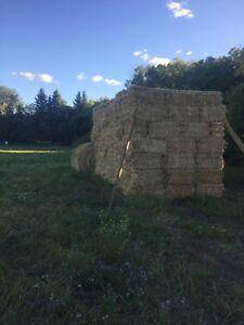 Square Wheat Straw Bales