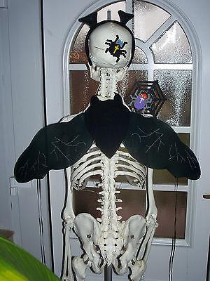 ♛ Schatten Wesen FLÜGEL schwarze FEE Magie ELFEN Dracula Monster Kostüm NEU - Neue Monster High Kostüm