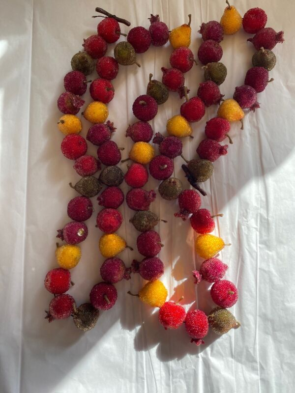 CHRISTMAS Sugared  FRUIT GARLAND