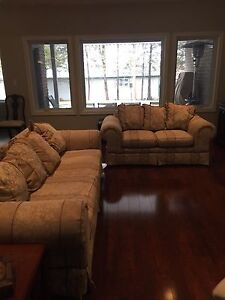 Couch and loveseat. New lower price $230