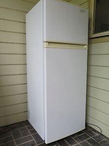 Kelvinator fridge&freezer Opal C300 (154 x 59 x 60.7) Indooroopilly Brisbane South West Preview