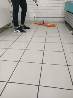 Cheapest  Price / Professional Cleaning