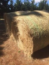 Quality Grass Hay Pearcedale Casey Area Preview