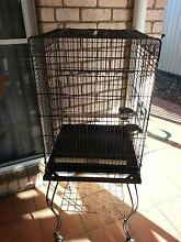 PARROT CAGE ON STAND  COME WITH 2 FEED BOWLS $40 Parkwood Gold Coast City Preview