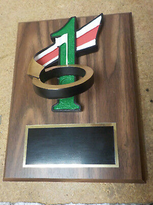 """Golf award, 6x8"""" plaque, Hole in One, colorful, personalized, w/ your engraving"""