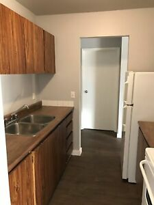 Cute One Bedroom with South Facing View