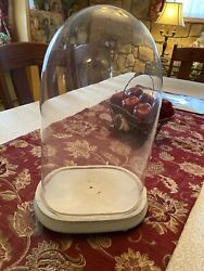 Antique Victorian Oval Glass dome globe taxidermy, clock, presentation, DOLL !