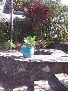 PLANT CLEARANCE...Oxenford. LAST DAYS Oxenford Gold Coast North Preview