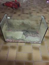 Fish tank with 3 large rocks log and pebbles Caves Beach Lake Macquarie Area Preview