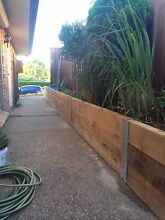 30$ lawn mowing and general landscaping Quakers Hill Blacktown Area Preview
