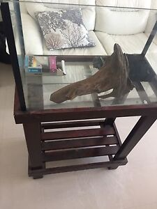 2 FOOT Fish/Reptile Tank with stand and accessories. CHEAP MUST GO Maroubra Eastern Suburbs Preview