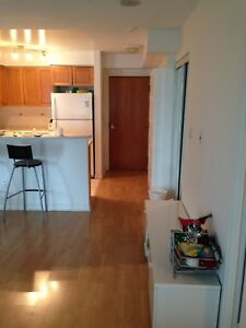 2 Bedroom 2 Bathroom Furnished Condo for lease