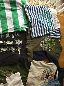13 boys shirts sizes from 12 months to 2T