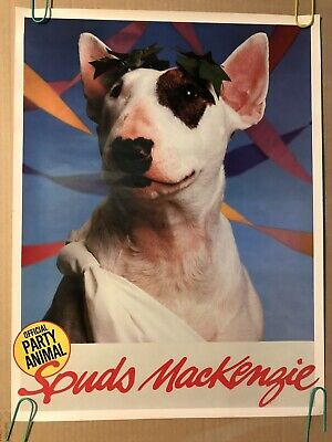 Spuds Mackenzie Dog Toga Official Party Animal Original Vintage Pin Up Poster](Toga Dog)