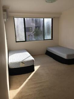 Pyrmont double/master room for rent