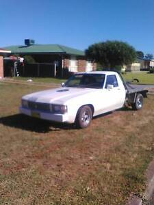1981 Holden 1tonner Manilla Tamworth Surrounds Preview