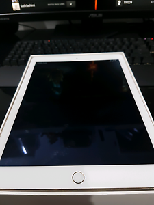 iPad Air 2 16gb Gold (with warranty) Berrinba Brisbane South West Preview