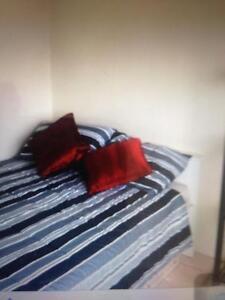 Private Room Short or long term- BONDI Bondi Eastern Suburbs Preview