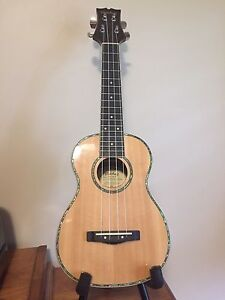 Mitchell Concert Ukulele with case