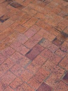 Red / Claret Clay Bricks Glengowrie Marion Area Preview