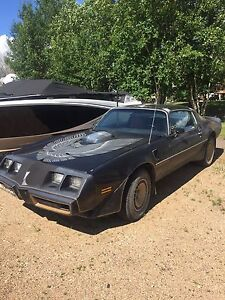 1981 Pontiac Firebird Trans-am 383 Stroker Sell/Trade