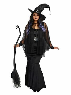 Bewitching Beauty Adult Women's Costume Velvet Halloween Witch Plus Size 1X-2X
