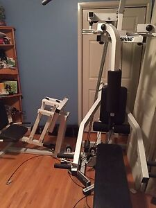 Weight system Cambridge Kitchener Area image 3