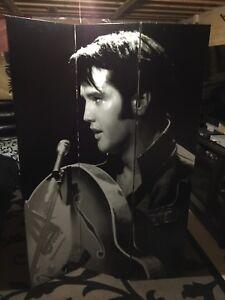 Elvis room divider