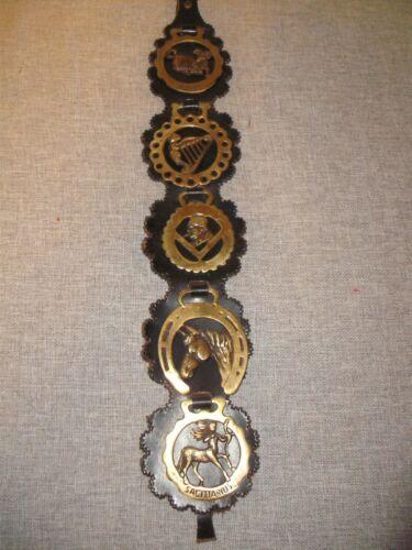 Vintage English Brass Horse Medallions on Leather Belt
